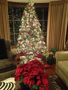 Transitional style home holiday decor by sandy newhart designs on pinterest red green Transitional home decor pinterest