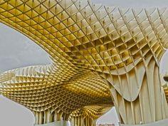 Plaza de la Encarnación de Sevilla