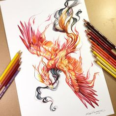 Phoenix by on One of the most stunning phoeni. Phoenix by Bird Drawings, Love Drawings, Colorful Drawings, Tattoo Drawings, Body Art Tattoos, Sleeve Tattoos, Phoenix Bird Tattoos, Phoenix Tattoo Design, Pheonix Drawing