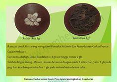 Ramuan-Kesuburan-Pria-23 Recipe Cards, Herbalism, Islam, Health, Recipes, Herbal Medicine, Health Care, Ripped Recipes, Salud