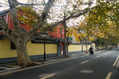 Head to Yihe Road for a quiet and historical walking tour Nanjing, Walking Tour, Sidewalk, Tours, Side Walkway, Walkway, Walkways, Pavement