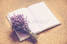 Natural background : Flowers on a notebook