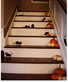 Use black construction paper and make cut outs of cats, rats, bats (it all rhymes! ah hahaha) or spiders and stick them on stairs or doorways.
