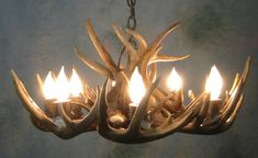 """Round Whitetail Deer Antler Chandelier :    Was: $2,158.00 Now: $1,942.00    Your Savings:   $216.00 (10.01%)          SKU:   antler-lighting-chandelier-PA-534                       Qty: 1 Dimensions:  28""""X 28""""X16""""     All antler chandeliers are handcrafted upon order and will be delivered in approximately 4 - 6 weeks. As with most of our antler lighting and decor, this item is delivered for free to the lower 48 states!  Call for deeply discounted delivery rates to Alaska and Canada."""