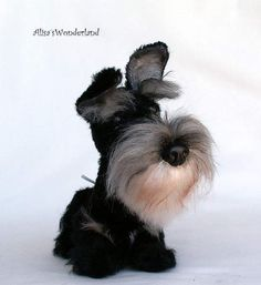 Miniature schnauzer the order by By Alisa Shangina | Bear Pile