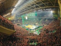 OAKA stadium.  Fifth final Panathinaikos vs Loosers 82-71. These are the green fans during the game. With this win Panathinaikos embraced the 34th championship in Greece .