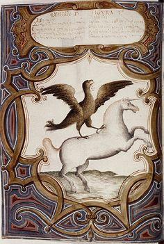 St John's Unicorn Ri