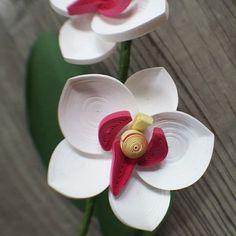 quilling - #orchid #quilling#paperquilling #quillingflowers #quillingart#papercrafts #paperart#paperflowers #handmade#dogwood #종이감기#종이감기공예#종이감기꽃#종이공예#종이꽃#핸드메이드