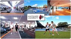 Macquarie PhD Scholarships in Australia - Immigration Experts Sydney City, Basketball Court, University, Australia, Learning, Sports, Hs Sports, Studying, Teaching