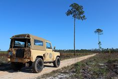 Over 40 percent of South Walton's land is protected habitat (some acres in total), and the majority of it is in Point Washington State Forest. Defender 90, Land Rover Defender, State Forest, Beach Camping, Washington State, Fly Fishing, Habitats, Acre, Seaside