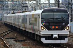 2017年12月24日、松本車両センター所属のE257系M101編成を利用した団体列車が藤沢→白馬間で運転されました。