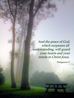 Philippians 4:7 (KJV) And the peace of God, which passeth all understanding, shall keep your hearts and minds through Christ Jesus.