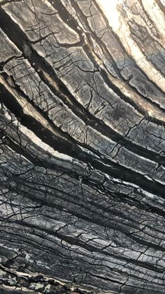 Leather Granite, Wood Countertops, Petrified Wood, Counter Tops, Tenerife, Atlantis, Fabric Material, Natural Stones, Bathrooms
