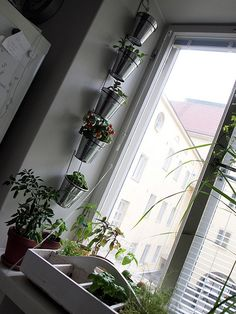 Vertical garden using IKEA's KROKEN cutlery stands