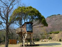 1treehouse02mark.jpg by Miguel Garces, via Flickr