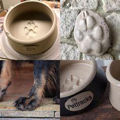 Cat Supplies, Pet Bowls, Dog Lovers, Ceramics, Dogs, Ceramica, Pottery, Pet Dogs, Doggies