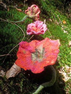 filzblüten auf  dem moos