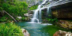Wild-Swimming-Australia©Swimming-Hole_Scouts-Waterfall-SherwoodNR_Scouts-Waterfall_071_AndyLewis_Web800wide_50