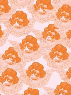 Va fan Grumpy cat, orange/rosa - poster