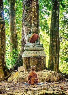 """One does not practice Zen to become Buddha; one practices it because one is a Buddha from the beginning - and this """"original realization"""" is the starting point of the Zen life. Art Buddha, Buddha Zen, Buddha Buddhism, Buddhist Monk, Buddhist Art, Image Zen, Yoga Studio Design, Little Buddha, Art Asiatique"""
