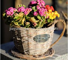 Source handmade plastic lined antique wicker tea cup flower plant pot decorative plant pots indoor on m.alibaba.com