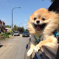 Lovin' the wind in my hair!