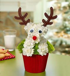 Reindeer Pup-cake™ with Santa's favorite reindeer makes the perfect dog flower arrangement for Christmas!