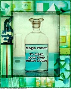 Looking for the Magic Potion | FlyLady.net