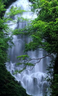 Archway Waterfall..