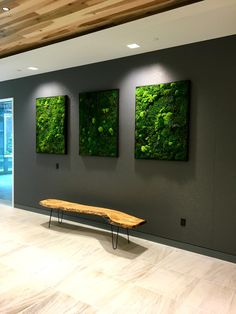 Beautiful lighting on this tryptic preserved moss wall art for Trinity Capital in Charlotte NC. Moss Wall Art, Diy Wall Art, Moss Art, Home Room Design, House Design, Moss Decor, Interactive Walls, Vertical Garden Wall, Green Wall Art