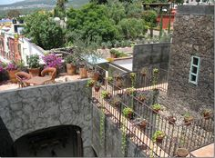 roof top terraces in SMA Mexico