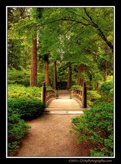 Garden bridge Garden Pinterest Bridge Gardens and Plants