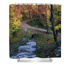 Magical autumn evening in colorful forest Forest Path, Autumn Forest, Colorful Trees, Curtains For Sale, Shower Curtains, Art For Sale, Fine Art America, Stairs, Scene