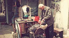 A CHINESE FAIRY TALE II by atelier olschinsky , via Behance