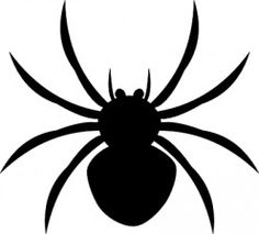 Scared of spiders? This might help…