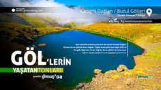 Karagöl Yaylası Dağları http://kesfet.giresunblog.com/karagol-daglari-buzul-golleri/