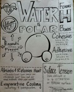 We Teach High School: AP Water Summary Sheet
