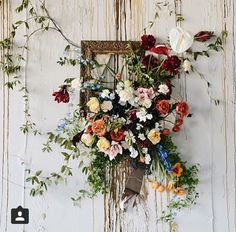 Flowers/colors