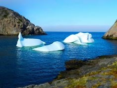 A divers Paradise. Beautiful Sites, Beautiful Places In The World, Oh The Places You'll Go, Places To Travel, Places To Visit, Newfoundland Canada, Newfoundland And Labrador, Canada Summer, Naturaleza