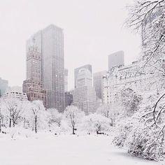 CentralPark NYC NewYork in the snow.
