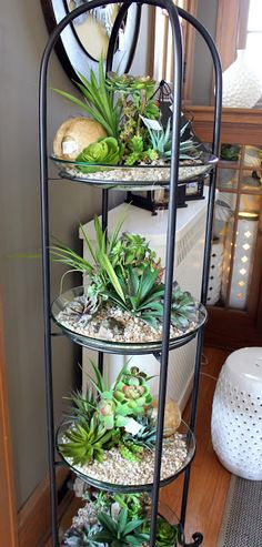 i would love this with cactus on the top (out of reach of kids) and Succulents on the other two.
