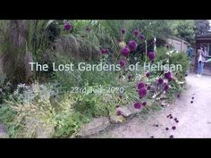 The Lost Gardens of Heligan 23rd July 2020 - YouTube Lost Gardens Of Heligan, Victorian Gardens, The Creator, Youtube, Plants, Plant, Youtubers, Youtube Movies, Planets
