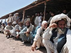 Most of IDPs prefer to settle in KP towns