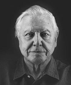 A very happy 90th birthday to a true icon and gentleman, Sir David Attenborough. #DavidAttenborough #90thBirthday #Icon #Birthday #Gentleman #Nature #Earth