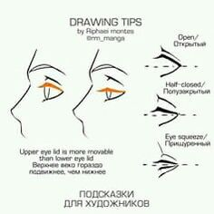 Anatomy Drawing Reference Drawing Tips- Eyes/Eyelids - Eye Drawing Tutorials, Drawing Tutorials For Beginners, Drawing Techniques, Drawing Tips, Art Tutorials, Drawing Sketches, Sketching Tips, Comic Drawing, Drawing Drawing
