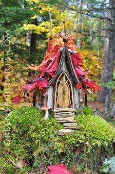 Live-2-Gallon-Moss-Starter-Organic-Garden-Landscapes-Fairy-Worlds-Art-Zen