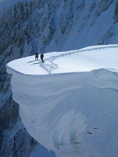 ...walking on a snow ledge... right up to the very edge it appears... looks like they got a way with it this time...