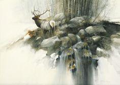 """Call Across The Valley"" Elk  15x20 Watercolor"