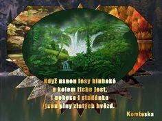 Lesní studánka - příběh, fotografie - Vtipy, vtipné obrázky - NEZAŘADITELNÉ TÉMATA, DOTAZ