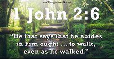 Devotional: Walking in the Footsteps of Jesus by John Grant